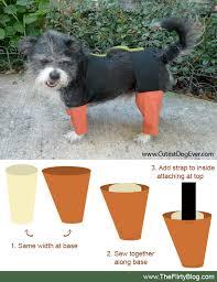 Small Puppy Halloween Costumes Place Flirty Blog Chia Pet Kitai