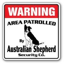australian shepherd ebay fox terrier property protected by warning sign pet warning signs