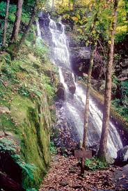 Tennessee nature activities images 482 best smoky mountains tn images great smoky jpg