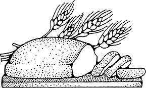 Bread Wheat Clipart Clipground Bread Coloring Page