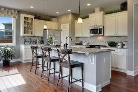 florida kitchen design emejing florida kitchen design ideas pictures interior design
