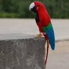 fake artificial parrot feathered bird garden home decor taxidermy budgie 30cm 045 11 jpg