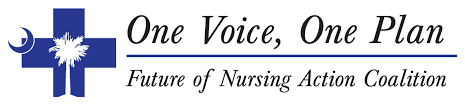 south carolina one voice one plan college of nursing