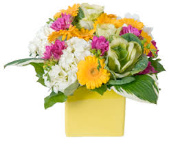 weekly flower delivery nyc weekly flower delivery service fresh direct for the soul