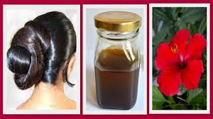 hibiscus homemade hair oil for hair regrowth remove dandruff thick