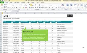 diet and exercise journal template for excel 2013