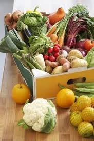 list of foods to eat with kidney failure kidney disease kidney