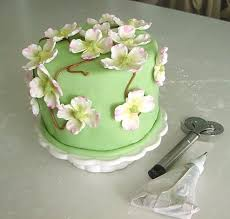 Decorating Cakes Zozulin Joan Welcome