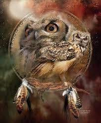 The Owl Barn Gift Collection Owl Art Fine Art America