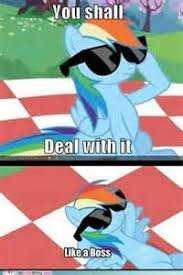 20 Cooler Meme - 18 best my little pony humor both sweet and sassy images on