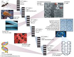 synthesis and biomedical applications of graphene present and