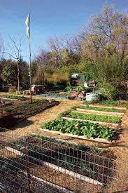 how to make cheap garden beds organic gardening mother earth news