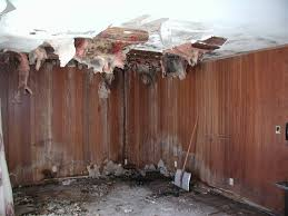 How To Insulate Your Basement by Green Remodeling Tip Fiberglass Insulation In The Basement Is A