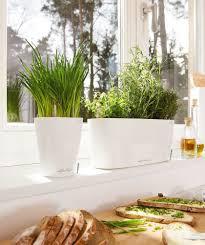 window planters indoor the mini deltini planter with the small delta windowsill planter
