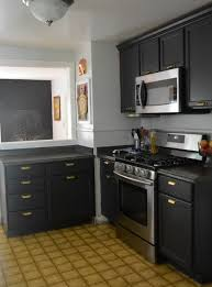 Light Colored Kitchen Cabinets Dark Gray Stained Kitchen Cabinets Home Design Ideas