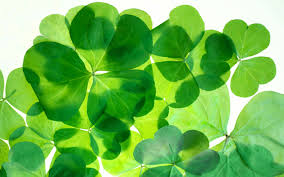 add green to your routine for st patrick u0027s day and beyond