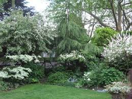 56 best green u0026 white garden images on pinterest white gardens