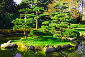 collection beautiful landscaped gardens photos best image libraries