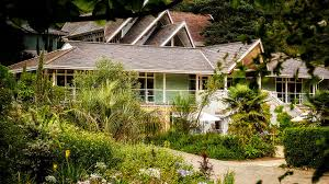Ventnor Botanic Gardens Ventnor Botanic Garden Hasn T Got Infinite Appetite For Losses