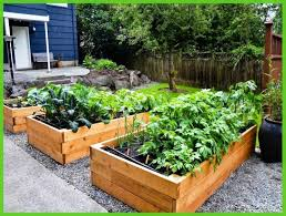 Raised Garden Bed Designs Extraordinary Raised Garden Beds Designs Raised Bed Vegetable