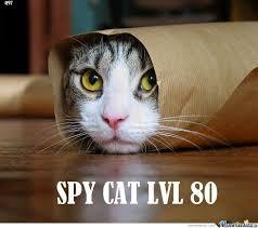 Spy Meme - spy cat lvl 80 by ben meme center