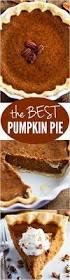 best 25 best chefs knife ideas on pinterest best kitchen knives the best pumpkin pie