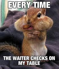 Squirrel Meme - 31 most funniest squirrel meme pictures and photos