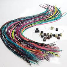 hair feathers hair feathers feather hair extensions feather extensions