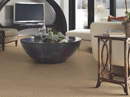 How To Install Laminate Flooring Next To Carpet Shaw Carpet Warranty Five Carpet Fiber Warranties Shaw Floors