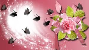 wallpapers of glitter butterflies flower rose pink butterfly shine ribbon summer slisten glow flower