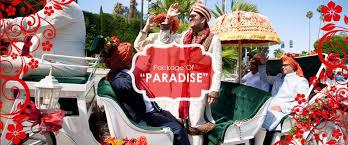 wedding bands in delhi best bands in delhi the top 10 wedding bands in delhi ncr