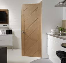 contemporary indoor doors examples ideas u0026 pictures megarct com