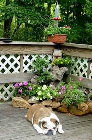 Small Rocks For Garden Corner Rock Garden Ideas