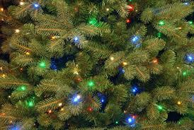 douglas fir christmas tree the aisle douglas fir 7 5 green downswept artificial