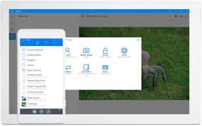 dropbox windows windows app dropbox