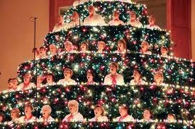 singing christmas tree singing christmas tree cancelled pembroke daily observer