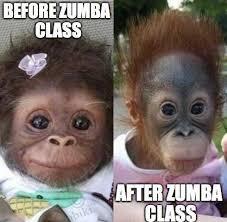 Zumba Meme - zumba memes 02 slap laughter by sdl
