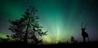 alaska vacation to see northern lights the best time to see the northern lights on an alaska cruise ncl