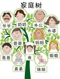 best 25 family tree worksheet ideas on family tree