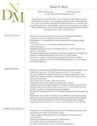 Professional Summary On Resume 28 Professional Summary On Resume Examples Professional Summary