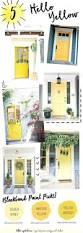 front doors front door color for light gray house front door