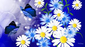 glitter wallpaper with butterflies glitter tag wallpapers flash silk glitz stars babies sparkle satin
