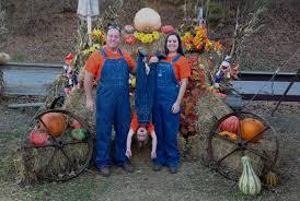 home harvest moon pumpkin patch
