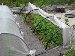 buiilding frames for insect netting and row covers