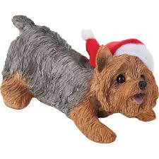 amazon com sandicast yorkshire terrier with santa hat christmas