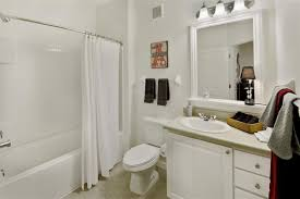 Apartment Bathroom Storage Ideas Bathroom Apartment Ideas Shower Curtain Craftsman Shed Beach