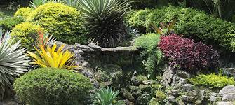 Pictures Of Rock Gardens Landscaping Landscaping Designs 21 New Ideas For Landscaping Photos