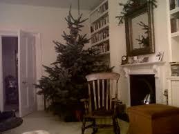 migraine monologues how a christmas tree gave me a migraine u2026