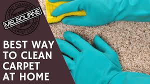 carpet cleaners carpets cleaning melbourne best way to clean