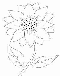 100 sunflower colouring pictures free printable coloring